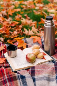 Sipping hot cider, peeping and stomping autumnal leaves...it's no wonder people are falling for Fall getaways. (Searches for autumn scenery +94%)