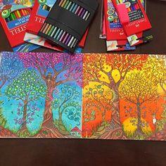 Inspiração ⓛⓘⓝⓓⓐ para página dupla!! Super legal fazer manhã/noite amei!!!!! @joanalikes arrasou!! --------------------------------------------------- #⃣ Use #jardimsecretoinspire para que seu colorido seja compartilhado aqui no nosso perfil!! ➡️ Envie por Direct também as suas fotos!! #jardimsecretoinspire #jardimsecreto #livrojardimsecreto #secretgarden #amamosjardimsecreto #inspiração #colorir #cores #colors #vejabh #revistaexclusive #johannabasford #antiestresse #diversão…