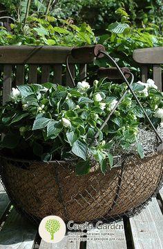 Корзины декоративные Esschert Design.Декоративные корзины из металлической сетки с деревянными ручками, могут использоваться для сбора урожая или в качестве кашпо для посадки цветов, трав, овощей.
