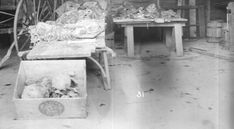 Belle Gunness | Photos 3 | Murderpedia, the encyclopedia of murderers