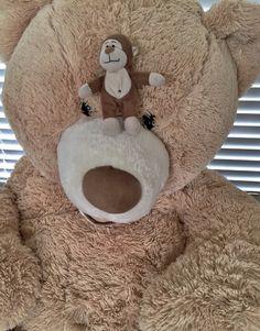 It's another #Monday. I can't bear it. #HappyMonday #bear #stuffedbear Another week of fun & adventure ahead. #enjoy