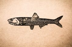 Old Vintage Fish 1 x 3 Stamp