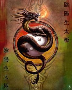 Yin Yang by Anne Stokes
