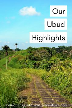 Ubud was easily our favourite place in Indonesia, here are our highlights from our two week stay in Ubud, Bali