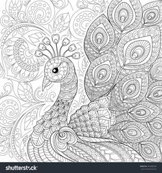 Peacock In Zentangle Style. Adult Antistress Coloring Page. Black And White Hand Drawn Doodle For Coloring Book Stock Vector Illustration 454388200 : Shutterstock Peacock Coloring Pages, Mandala Coloring Pages, Animal Coloring Pages, Coloring Book Pages, Peacock Drawing, Peacock Art, Mandala Doodle, Mandala Art, Adult Coloring Pages
