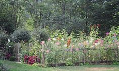 A self-sown annual garden.   Dean Riddle's Garden_5 by MyArtfulLife, via Flickr.