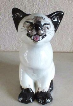 Seneshall cat ~ 'wicked kitten' ~ beautiful face, naughty miowing Siamese. | eBay