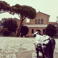 Basilica Sant'Apollinare in Classe, Ravenna (RA)