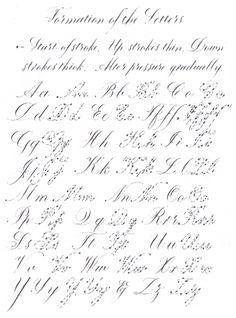... Calligraphy Fonts Alphabet, Alphabet Flourished, Calligraphy Alphabet