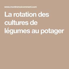 La rotation des cultures de légumes au potager