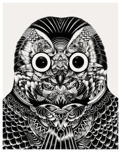illustration - Owl Portraits by Iain Macarthur - CoDesign Magazine Black And White Owl, White Owls, Owl Head, Owl Illustration, Illustration Artists, Character Illustration, Owl Pictures, Owl Pics, Black And White Illustration