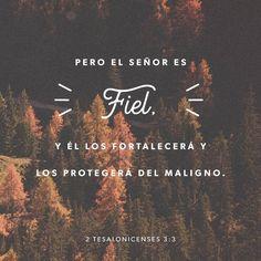 """""""Pero el Señor Jesucristo les dará una firme confianza y los protegerá del mal, porque él siempre cumple lo que dice."""" 2 Tesalonicenses 3:3 """