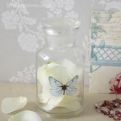 Butterfly storage jar - vintage shabby chic bathroom ideas
