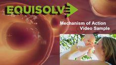 Equisolve is an award-winning digital agency providing corporate & investor relations website development & website management services to public companies. Cell Video, Corporate Website Design, Video Websites, Sales Presentation, Social Media Video, Public, Medical, Videos, Medicine