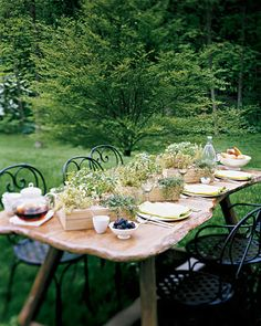 Bring the inviting scent and flavor of fresh herbs to the table with miniature gardens (we chose small- leaf basil, with trailing and golden variegated thyme in the corners).