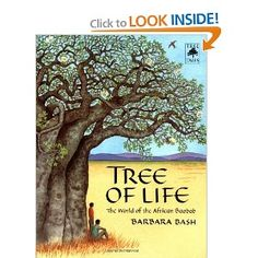 Tree of Life: The World of the African Baobab (Tree Tales): Barbara Bash Best Children Books, Childrens Books, Trees For Kids, African Tree, Planting For Kids, Baobab Tree, African Culture, African History, Tree Crafts