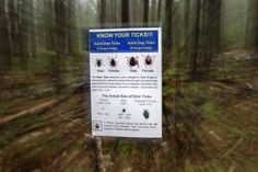 Lyme disease, A report released 5/2014 says insurance coverage of long-term antibiotic treatment of chronic Lyme disease would only increase insurance policies by about 13 cents.
