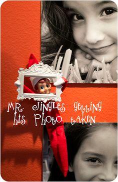 Mr. Jingles our Elf on a Shelf
