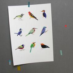 Ptáci I