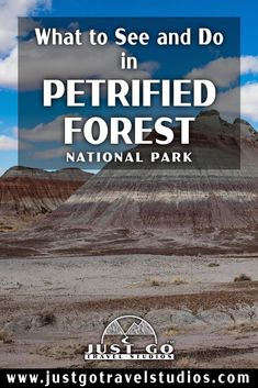 Our blog will help you plan your vacation to Petrified Forest National Park.  This great park in Arizona is amazing-don't miss it! Petrified Forest National Park, Arizona Travel, What To Pack, Where To Go, Just Go, Falling In Love, National Parks, Wanderlust, Vacation