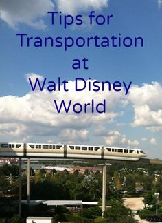 Monorails, shuttle buses, and boats are just a few of the ways to get around Walt Disney World. Learn expert tips for navigating all the Disney transportation choices before your next vacation.