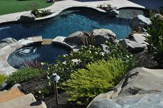 One of the local pools we've worked on here in Northern California's Bay Area -- we LOVE the naturalistic vibe all these plants give off Swimming Pool Repair, Swimming Pools, Aqua Pools, Northern California, Bay Area, The Locals, Gallery, Outdoor Decor, Plants