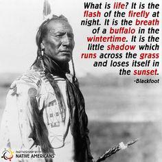 #knowledge #proverb #PWNA #Native