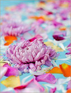 floating flowers & petals #FlowerShop