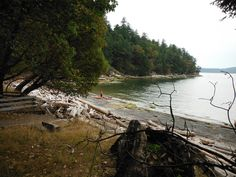 Pirates Cove Marine Park - DeCourcy Island, BC Anchored here and also in Herring Bay on Ruxton Island. In Herring Bay a nearby boat dragged onto us. We had to reanchor & then go out in 30 kt. wind in our 8' rowing dinghy to tie off his boat to a mooring buoy to keep it off the rocks. Dummy had 50' of anchor rode out in 35' of water and couldn't figure out why he dragged. The wind rose to 35 kts. overnight and our anchor held - 35 lb. plow anchor with 120' 5/16 chain plus 50' 5.8 nylon rope.