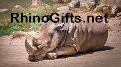 Visit RhinoGifts.net for more beautiful rhino photos