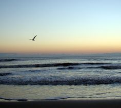 Beautiful Sunrise in Nags Head by Jeryl Bauman.  Outer Banks Photo Contest entry. www.VillageRealtyOBX.com