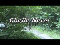 Cheile NEREI -DUNARE.wmv