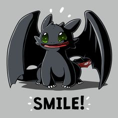 Swag How to Train Your Dragon Cute and Funny Classic T-Shirt for Kids Gray