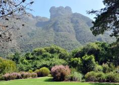 The Kirstenbosch Botanical Garden in Cape Town, South Africa, was founded in 1913. See another early 20th century garden in Canada next.    iStockphoto/Jurie Maree