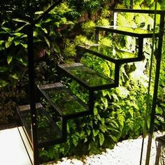 Planter Stairs- looks like youre walking on a forest.