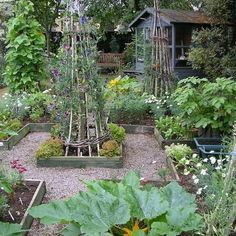 More veg plot inspo.#vegplots #vegetableplot #vegetablegarden #homegrown
