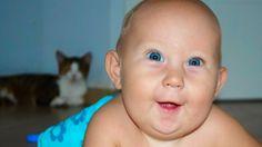 КТО СИЛЬНЕЕ кот или ребенок? Дети и кошки ❤️ Смешное видео ❤️ Cute Funny...