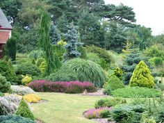 zahradní veiw