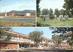 kg42599-Lipica-Hotel-Maestroso-Kozina-Kat-Sezana
