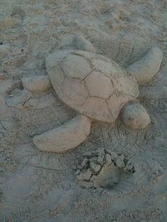 Sea turtle in sand beach sand castles, art club projects, colored sand, sand Art Club Projects, Sand Projects, Beach Sand Castles, Shark Images, Snow Sculptures, Snow Art, Colored Sand, Beach Activities, Beach Art