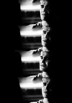 Stefan Salvatore - TVD - this scene killed me The Vampire Diaries 3, Vampire Diaries The Originals, Stefan Salvatore, Vampire Twilight, Dog With A Blog, Popular Book Series, The Salvatore Brothers, Damon And Stefan, Michael Trevino