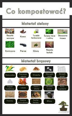 New Start, Garden Inspiration, Beautiful Gardens, Garden Plants, Garden Design, Home And Garden, Herbs, Health, Flowers