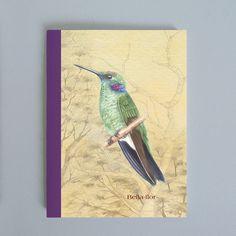 Sketchbook Beija-flor - ArteDG2