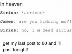 I feel so bad for cracking up Harry Potter Tumblr Posts, Harry Potter Jokes, Harry And Hermione, Ron Weasley, Lily Potter, James Potter, Funny Puns, Funny Me, Saga