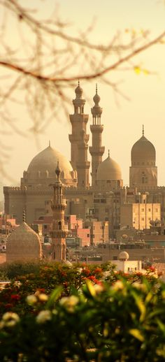 Cairo, Egypt More