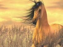 BUCKSKIN HORSE CROSS STITCH PATTERN