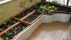 Cómo crear un práctico huerto urbano en la terraza Ketosis Diet, Balcony Garden, Deco, Berries, Ideas Para, Home And Garden, Yard, Exterior, Patio