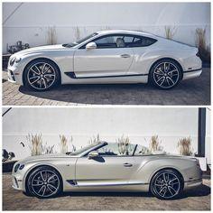 Bentley Sport, Bentley Car, Luxury Sports Cars, Best Luxury Cars, Bentley Motors, Bentley Continental Gt, Classy Cars, Car Goals, Expensive Cars