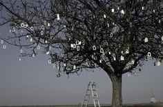 Stephanie Rhode / 1000 porcelain houses in a tree/ stephanierhode.nl
