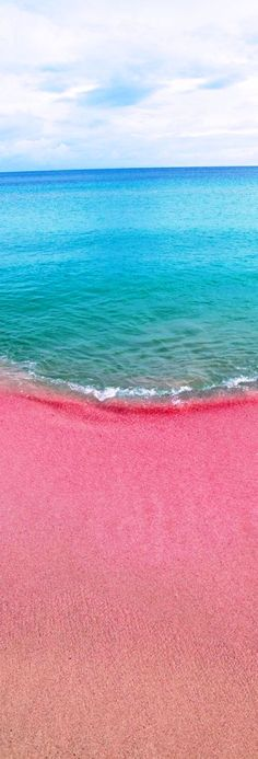 Pink Sands Beach in the Bahamas is one of the most spectacular and unusual beaches in the world. Find it on nearby Harbour Island. - is this real!?
